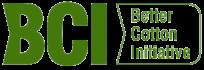 bci-big-logo-dg-t